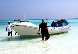 INSPIRATION_Beach & Dive 8 starsofafricase __1428401378_37.250.222.113