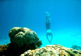 INSPIRATION_Beach & Dive 9 starsofafricase __1428401365_37.250.222.113